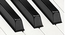 px s1000 keys