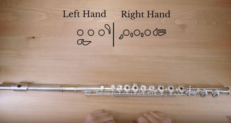 left hand and right hand finger placement in flute