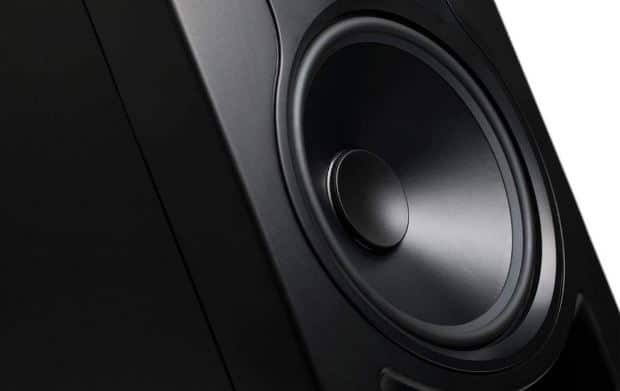 Woofer of kali LP 6