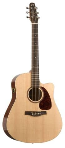 Seagull Coastline S6 Slim Thin Neck Acoustic Guitar