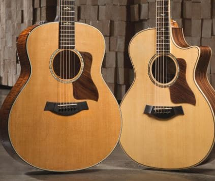 Taylor Guitars Brand