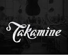 takamine low action guitar brand to avoid