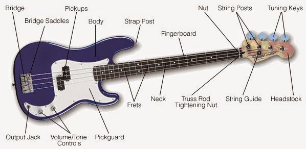 Bass Guitar Complete Structure