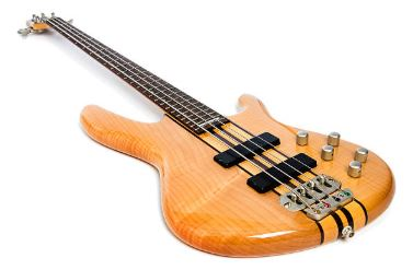 Bass Guitars are easy for beginners