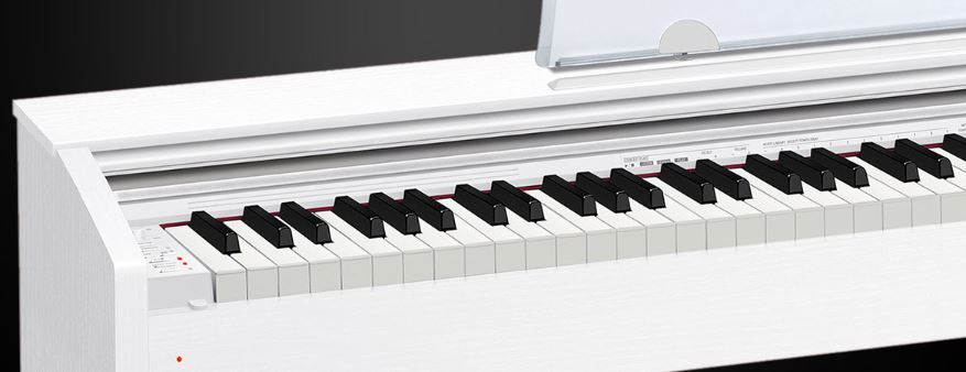Ebony and Ivory Weighted Keys of Privia PX 770