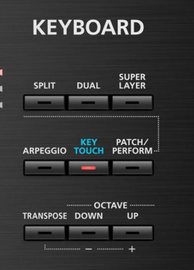 Effects and Modes Juno DS