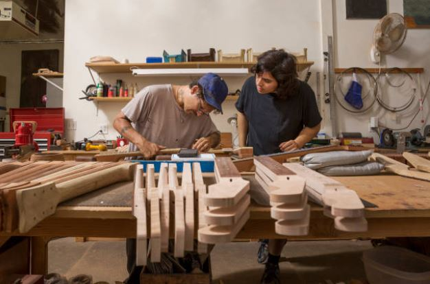 Luthier School for Learning as Proffesional